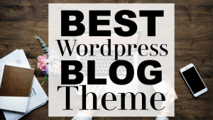 Don't waste valuable time looking through the countless WordPress themes available. Read this theme review to find out the best wordpress blog theme.