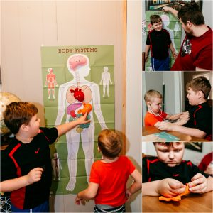 Kids looking at poster of the body systems from kiwi crate subscription box. A review of the kiwi crate subscription box.