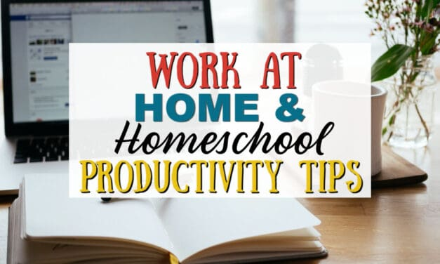 Work at Home and Homeschool   Productivity Tips