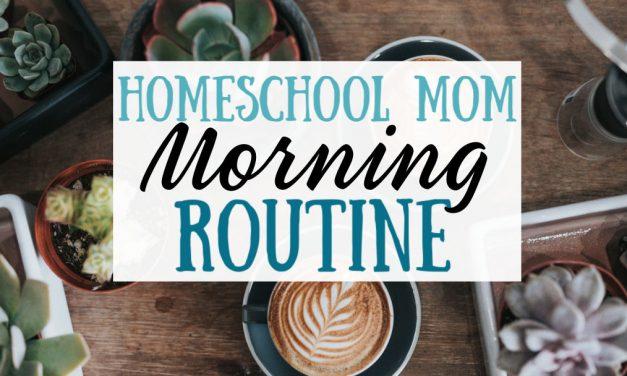 Homeschool Mom Morning Routine