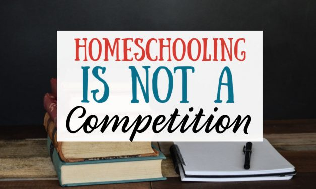 Homeschooling is NOT a Competition