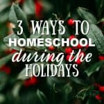3 Ways to Homeschool During the Holidays