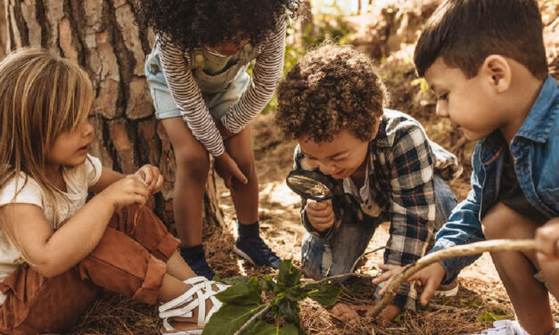 Nature Study: Exploring the Outdoors as a Homeschool Subject